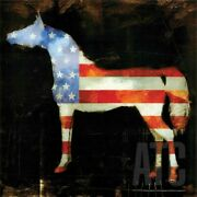 35wx35h Premium Collection By Craig Alan - America Usa Flag Choices Of Canvas