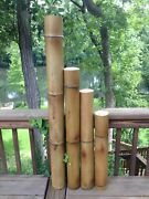 Giant 4 Diam. Flame Cured Bamboo Poles Avail. 1and039-7and039 Indoor/outdoor Decor