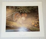 1986 Owen J Gromme Ruffed Grouse Red Phase Limited Edition Print 166/850