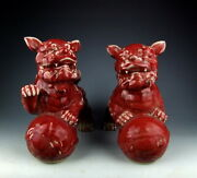 Pair Of Antique Red Glazed Porcelain Chinese Foo-dogs Playing With Ball