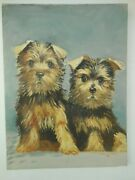 Yorkshire Terrier 1968 Oil Painting Yorkie Puppies Yorkshire Puppy A Carlson Dog