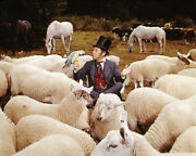Rex Harrison In Doctor Dolittle With Sheep And Parrott In Field 16x20 Canvas