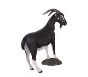 Billy Goat Life Size Statue Black And White Color Farm Display Prop Decor