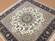 6and039.2 X 6and039.2 Square Ivory Navy Blue Fine Wool And Silk Oriental Rug Hand Knotted