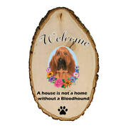 Bloodhound Welcome Outdoor Breed Sign