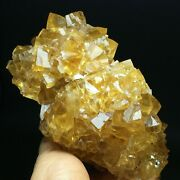 794g Gold Yellow Cube/white Flake Fluorescent Calcite Crystal Mineral Specimen