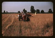 Georgia Farm, Wolcott, Tractor Oat Harvesting Early Color Photo Reproduction