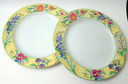 Set Of 2 Furio Yellow Creme Brulee Dinner Plates Flowers Botanical Names Rimmed