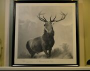 Nice Monarch Of The Glen Stag Engraved Print 1890 From Landseer's 1851 Oil Pnt