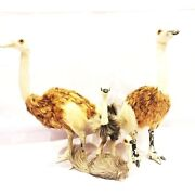 Bird Emu Big Family Vintage Animal Toy Doll Old Hairs Are Very Soft Rare