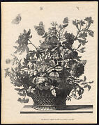 Rare Antique Print-basket Of Flowers-rose-lily-insect-allard-schenk-c. 1690