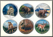 2011 To 2013 And039and039canada Wildlife Seriesand039and039 6 Cases In Box 5 1oz Silver Coin Set