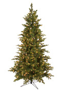 12and039 Grand Noble Fir Prelit Artificial Christmas Tree With Alwayslit Technology