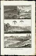 12 Antique Prints-hunting-traps-bird Trapping-bird Catching-diderot-1751