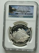 2013 Canada Silver 20 Bald Eagle Protect. Her Eaglet Early Release Ngc Pf 70 Uc