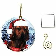 Imprints Plus Coonhound Red Bone Christmas Ornament 3 Porcelain Gift-boxed With