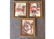 Lot Of 3 Budweiser Clydesdales Framed Photos Photographs From Parade - 1970's