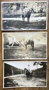 3 Antique Patriotic Costume Woman Riding Horse Star Stripes Real Photo Postcards