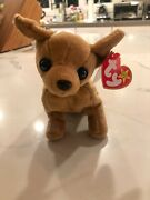 Ty Beanie Baby Tiny The Chihuahua With Errors Rare, Excellent Condition