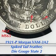 1921-p Morgan Vam-3a2 Spiked Tail Feather Die Gouge State 2 Ngc Ms65 Finest Kwn
