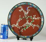 A Late 19th Century Chinese Cloisonne Plate Or Charger 1198