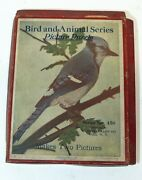 Madmar Vintage 1920s Bird And Animal Picture Puzzle Series 450 Blue Jay And Rabbit