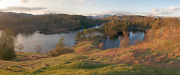 Lake District Photographic Print - Tarn Hows Viewpoint