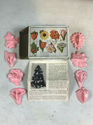 Vtg Aunt Chickand039s Flower Garden Pink Plastic Cookie Cutters 2.5 Box 4007