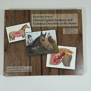 Illustrated Atlas Clinical Equine Anatomy And Common Disorders Of The Horse V2