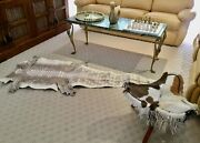 Genuine Crocodile Leather Hide Skin Collectible Gift Rug Souvenir With Cites