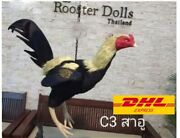Doll Rubber Thai Chicken Silicone Rubber Chicken Lure Cockfight Training Rooster