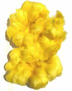 Dyed Goose Coquilles Feathers For Hawaiian Feather Leis Yellow