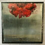 Artist Susan Wickstrand - Sorbet Giclee 20x20 Used To Decorate T.v.s Modern