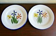 Pair Hf Coors Pottery 9 Hand Painted Plates - Flowers, Floral - Tucson, Az, Usa