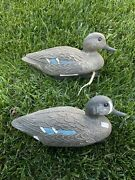 Lot Of Two Plastic Duck Decoy Blue Wing Teal