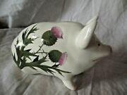 Vintage And Rare Wemyss Bovey Plichta Sitting Pig With Flowering Thistle 16 Cm