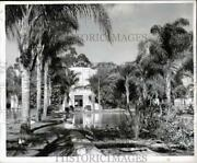 1951 Press Photo Swan Pool By A Cafe At The San Diego Zoo In California