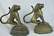 Fine Pair Large And Heavy 10kg Antique Indo-persian Bronze Lions C1820