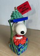 1993 Peanuts Danbury Mint Christmas Ornament Snoopy Wrapped In A Gift Box
