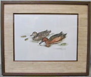 Sherrie Russell Meline Rare Signed Original Painting Duck Stamp Waterfowl Coa
