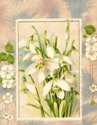 1910 Winsch Back Easter Silver Starburst White Snowdrops Flowers Floral Postcard