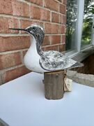 Least Tern Shore Bird Hand Carved And Painted Richard Morgan Vintage Decoy Rare