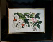 Atq Chinese Pith Painting Butterflies Flowers Reverse Painted Frame Curtis Moyer