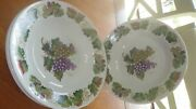 Vine By Tabletops Unlimited Soup Cereal Bowls Coupe Round Grape Vine Bowls 4 8