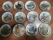 1982 Southern Living Le Plates Game Birds Of The South Lot Of 12 L👀k