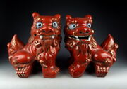Pair Of Chinese Antique Red Glazed Porcelain Foo-dog Statues