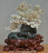 15and039and039 100 Real Natural Dushan Jade Carved Tree Peony Lily Flower Bird Statue
