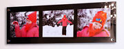 Multi Picture Photo Frame 10 X 7/10 X 8 /8 X 10 All Color Cheshire Acrylic