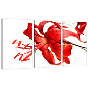 3 Part Red Canvas Pictures Wall Art Dining Bed Room Flowers Lily 3052