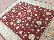 8.2 X 9.8 Red Yellow Fine Ziegler Oriental Area Rug Hand Knotted All Over